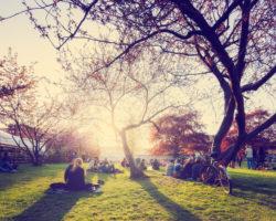 Шведские сады и парки