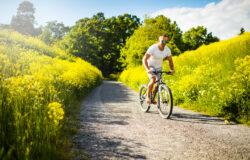 5 протяженных велосипедных маршрутов в Швеции