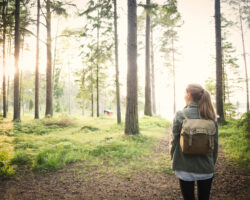 Пеший туризм в Швеции — приключение с севера на юг